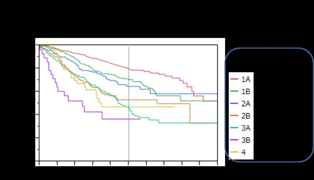 肺癌切除例生存曲線2004-2006