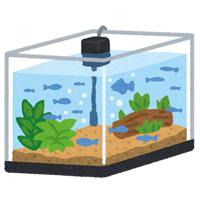 ●水槽イラスト
